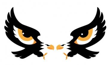 EagleI