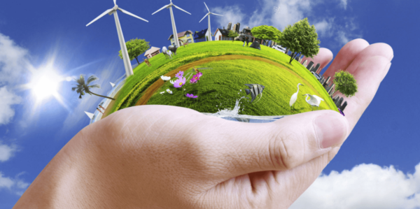 How to Make Your Business Environmentally Friendly