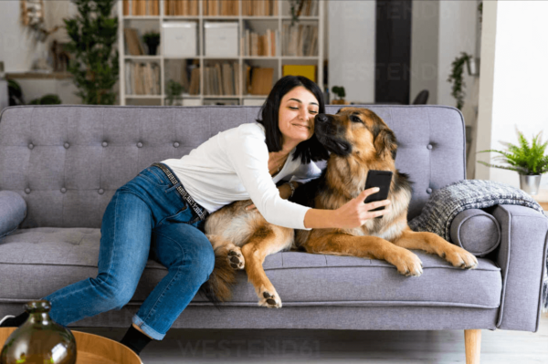 A Guide to Picking the Right Pet for Your Lifestyle
