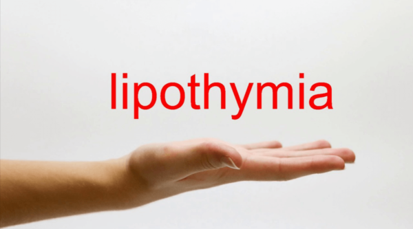 What is and causes of lipothymia?